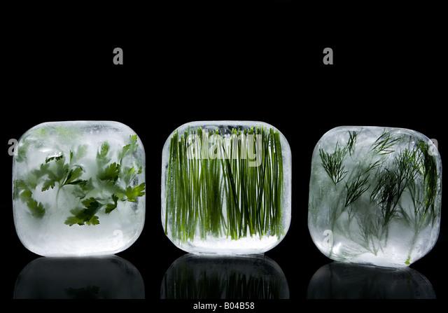 Frozen herbs - Stock Image