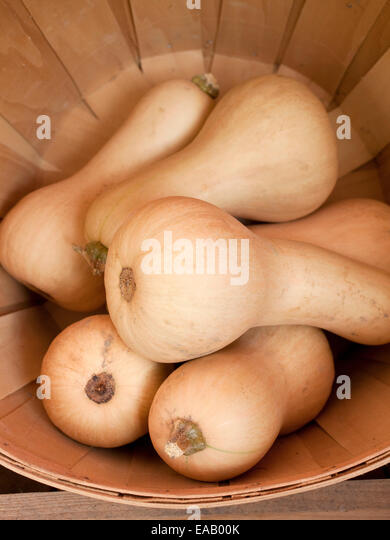 Acorn Squash In basket at farmer's Market - Stock Image