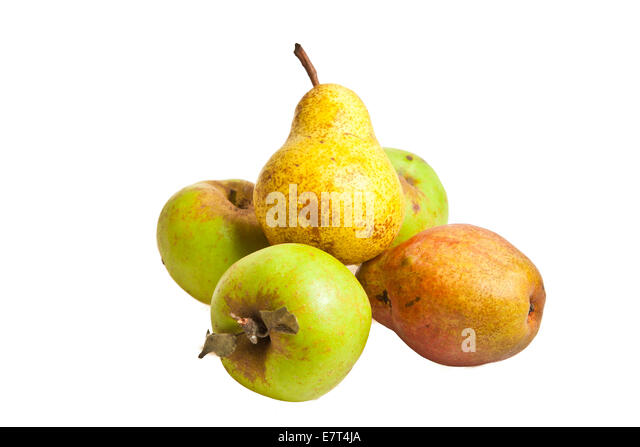 Biological green apple fruits isolated on white background - Stock Image