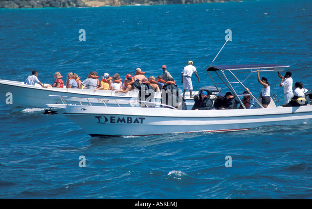 Dominican Republic Samana Peninsula small fast humpback whale watching boats action wake - Stock Image