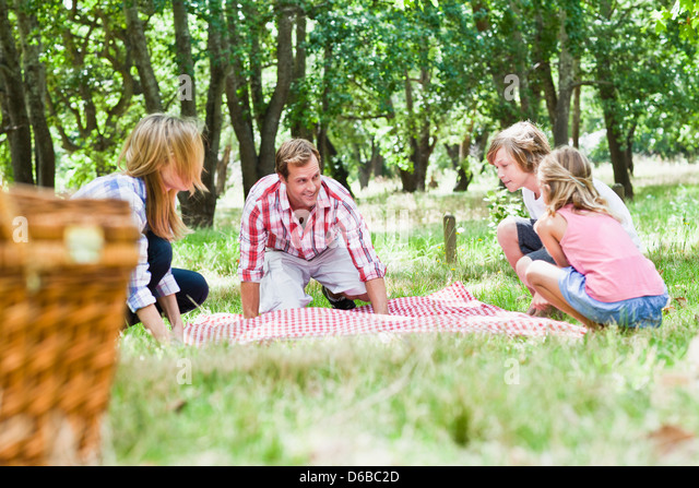 Family having picnic in park - Stock Image