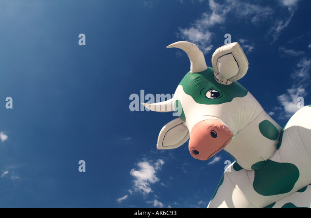 A cow bounce house at an amusement park - Stock Image