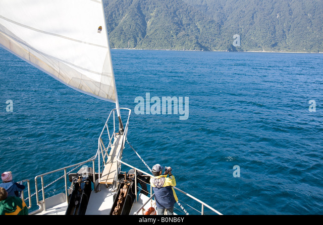 Mobile Crane Operator Jobs New Zealand : Jib camera stock photos images alamy