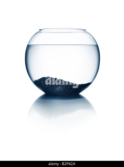 An empty fish bowl - Stock Image