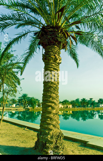 four lakes middle eastern single men Village of four lakes home login resident login request login contact us contact us map amenities request association documents four lakes.