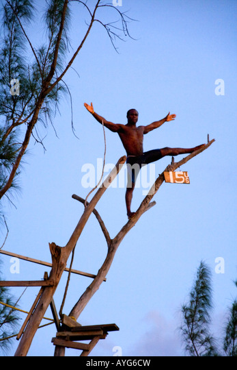 Jamaica Negril Ricks Cafe Cliff Diver jumping from a Tree - Stock Image