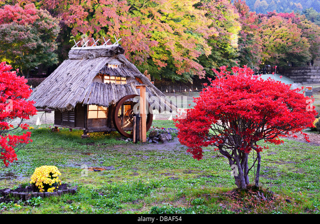 Huts and fall foliage in Kawaguchi, Japan. - Stock-Bilder