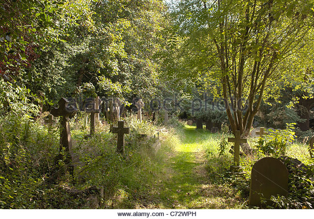 Worth graveyard Sussex overgrown wildlife sanctuary traditional country church Saxon ancient trees sun sunny grass - Stock Image