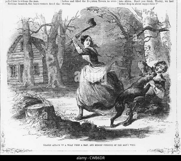 Deadly attack of a wolf upon a man, and heroic conduct of the man's wife. Woodcut ca 1867 - Stock Image