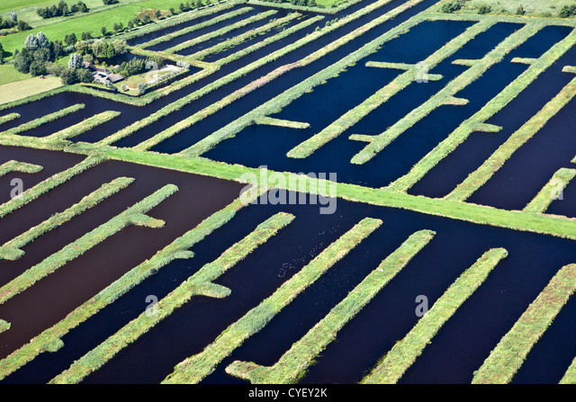 The Netherlands, Spanga, Landscape of water and small strips of land as a result of digging peat. Aerial. - Stock Image
