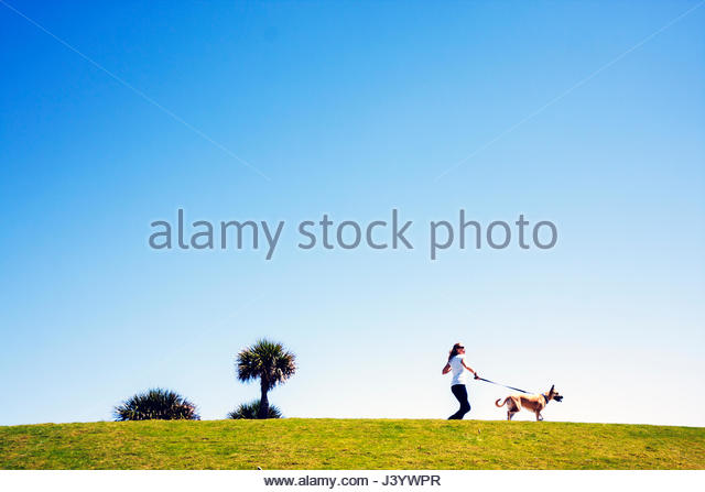 Miami Beach Florida South Beach South Pointe Park hill grass walkway woman walking dog pet leash - Stock Image