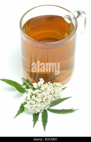 medicinal tea made of Valeriana officinalis medicinal plant Valerian Valeriana pianta medicinale te - Stock Image