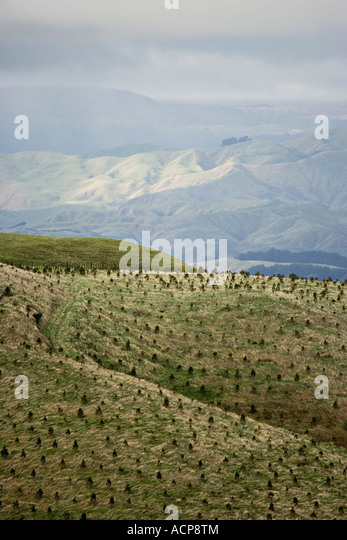 Hill views looking south from the northern end of the Tararua Ranges near Palmerston North North Island New Zealand - Stock Image