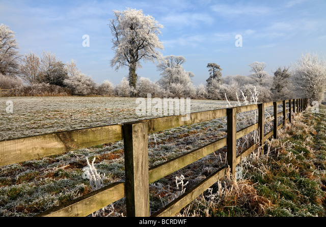 Heavy frost at Sullington, West Sussex - Stock Image