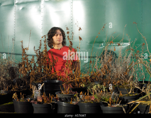 Young man in red standing amongst dead plants in plant pots - Stock Image