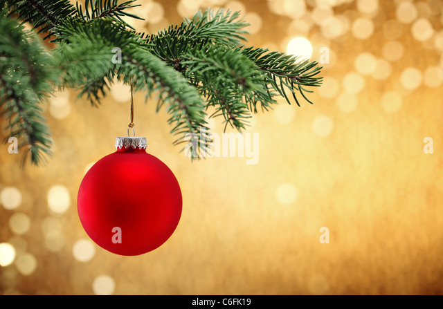 Shiny Christmas ball hanging on pine branches with festive background. - Stock-Bilder