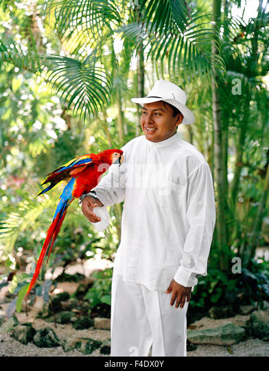 A Mexican staff member holds a Macaw parrot before its feeding time at Maroma Spa and Resort. Riviera Maya,Yucatan,Mexico - Stock-Bilder