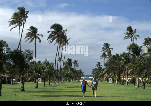 West Indies Nevis Nisbet Plantation grounds couple grass palm trees - Stock Image