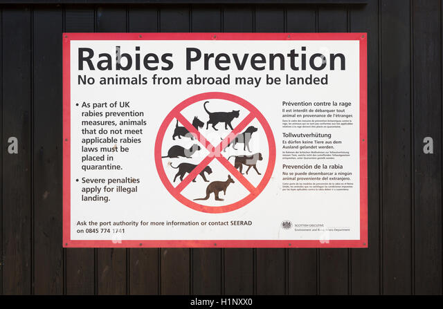 Rabies Prevention notice, Arbroath Harbour, Scotland - Stock Image