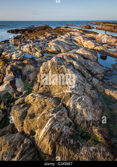 Foreshore Rocks, Early Morning, Pittenweem, Fife, Scotland - Stock Image