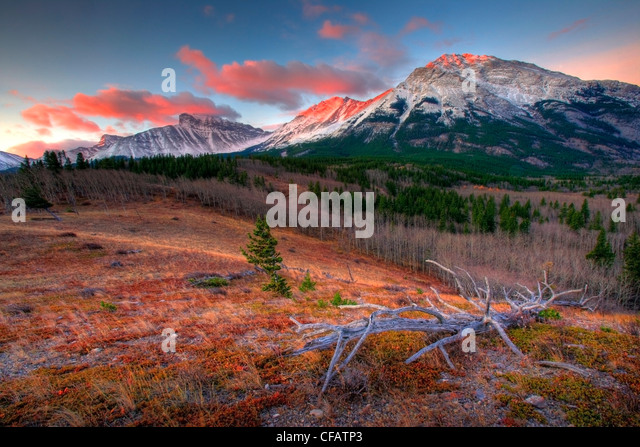 Sunrise and alpenglow above Crowsnest Pass on the border of Alberta and British Columbia, Canada - Stock Image