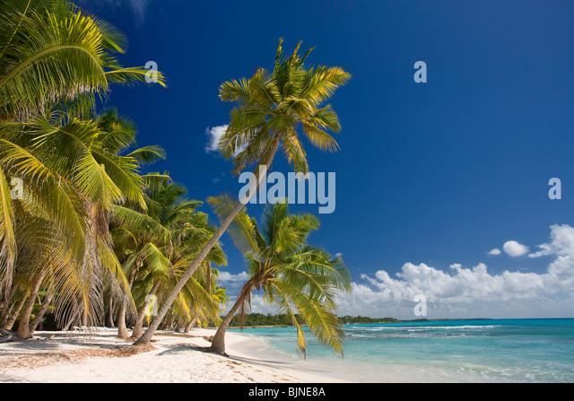 Saona Island, Dominican Republic - Stock Image