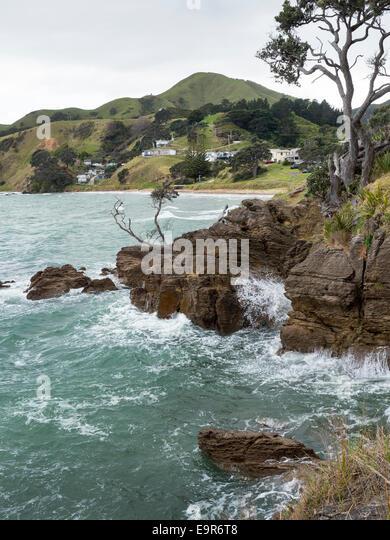 Rocky coast at Waitete Bay, Coromandel Peninsular, New Zealand - Stock Image