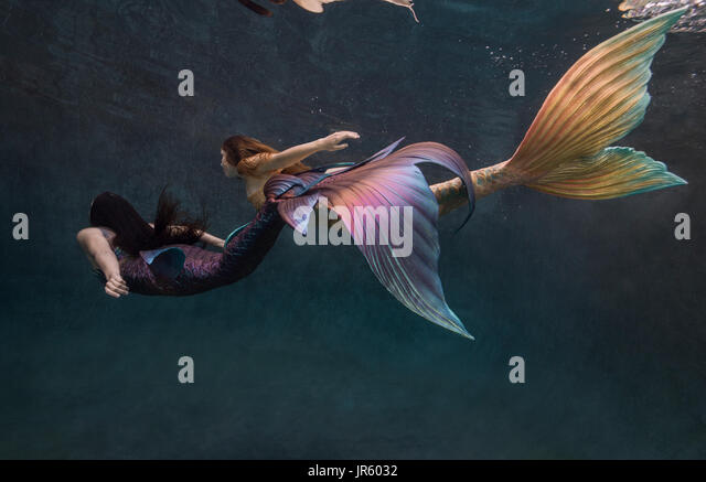 Two mermaids swimming in a pool in Virginia Beach, VA - Stock Image