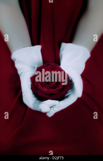 a woman in a red dress with white gloves is holding a red rose on her lap - Stock Image