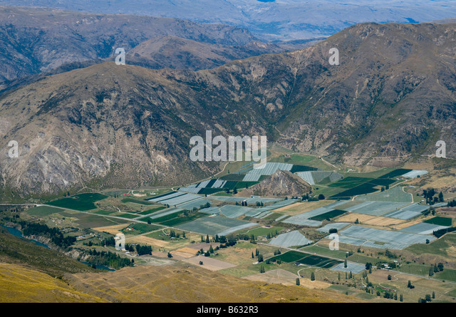 Vineyards near Queenstown from the summit of Rock Peak, near Queenstown, South Island, New Zealand - Stock Image