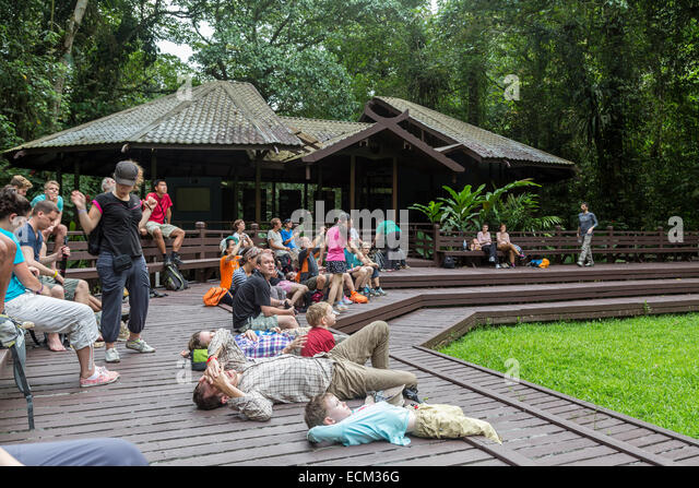 Bat flight viewing station, Mulu national park, Malaysia - Stock Image