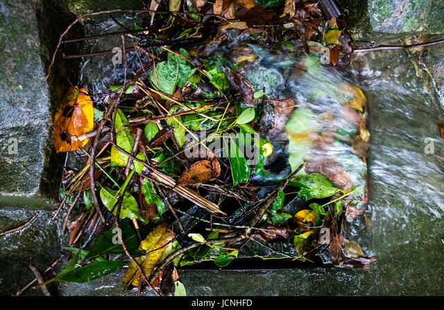 Grate Cover Stock Photos Amp Grate Cover Stock Images Alamy