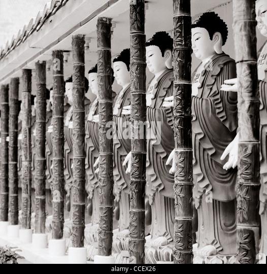 buddhist singles in naples Naples latinas dating with naples hispanic singles girls using the no1 free naples latin singles dating site for naples single latinas at amorcom meet hispanic single girls, naples single.