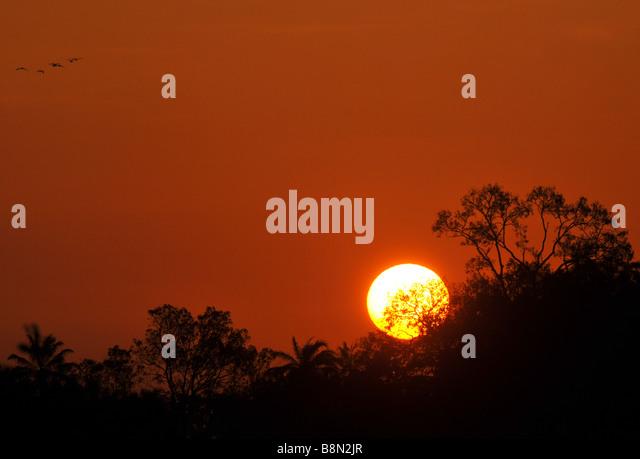 Sunrise in The Gambia, West Africa - Stock-Bilder