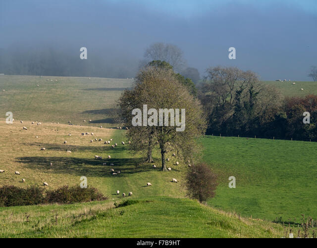 Stane Street, Roman Road, near The Gumber and Gumber Farm just north of Chichester, West Sussex - Stock Image