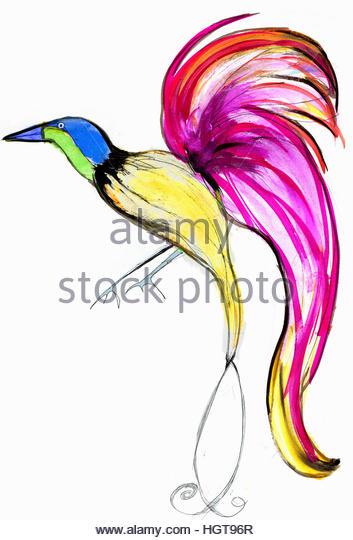 Bright, colorful bird of paradise - Stock-Bilder
