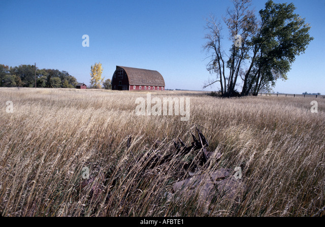 North Dakota Upper Midwest Great Plains State Mayville abandoned farm prairie grass agriculture - Stock Image