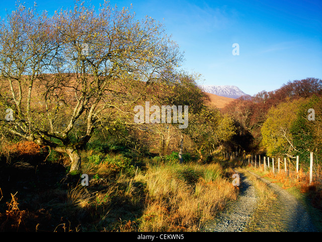 Co Donegal, Glenveagh, With Muckish In Backround, Ireland - Stock Image