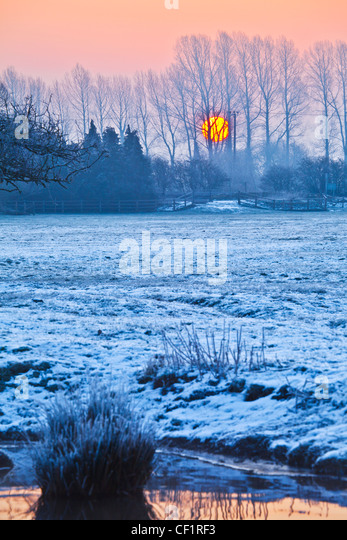 Sun rising behind line of trees on frosty Cotswold winter morning on the River Thames at Lechlade, Gloucestershire, - Stock Image
