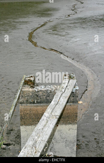 Abfischen stock photos abfischen stock images alamy for Pond fish stocking calculator