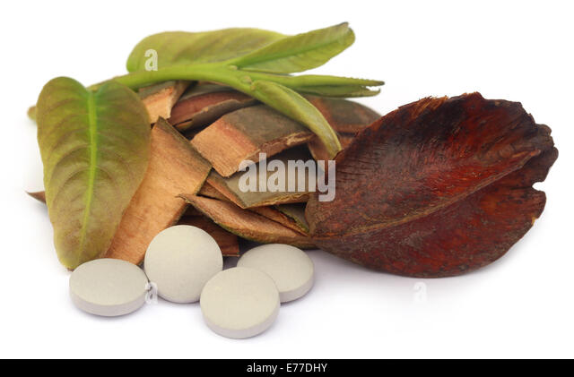 Medicinal Terminalia arjuna with pills over white background - Stock Image