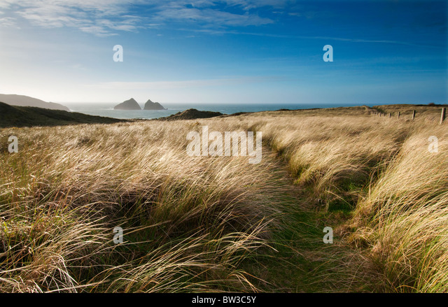 Late afternoon view towards Holywell Bay and Carter's or Gull Rocks in the distance - Stock Image