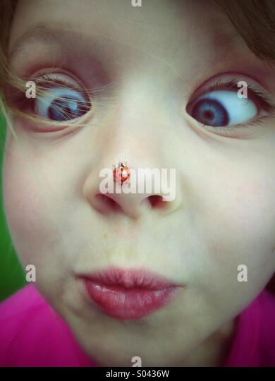 Little girl with ladybird on her nose - Stock Image