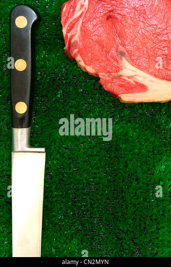Raw meat and kitchen knife on fake grass - Stock Image