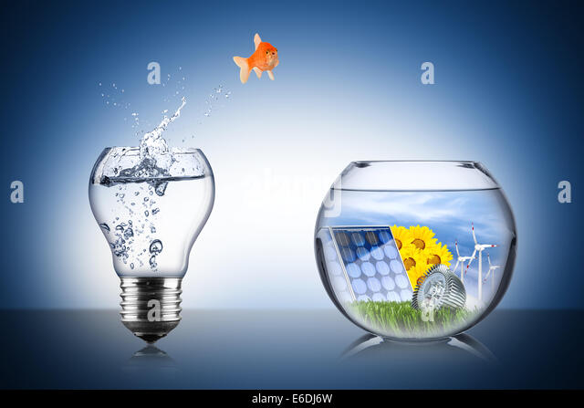 fish energy change concept - Stock Image