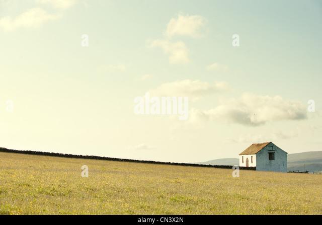 House in a field - Stock-Bilder