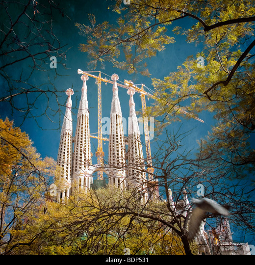 sagrada familia barcelona Spain - Stock Image