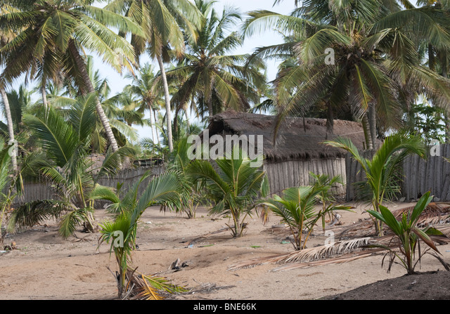 The Ewe village of Akosu, near Winneba. Built on a sandspit in front of the Muni lagoon, with huts mostly made from - Stock Image