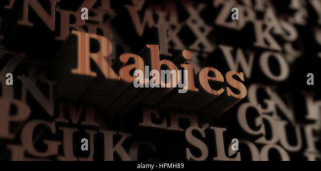 Rabies - Wooden 3D rendered letters/message.  Can be used for an online banner ad or a print postcard. - Stock Image