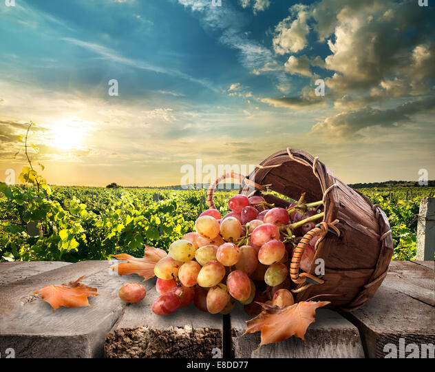 Grapes in a basket on wooden table - Stock Image